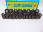 1.8T Cat Cams Ventilfedern